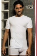Pánske tričko PIERRE CARDIN u17